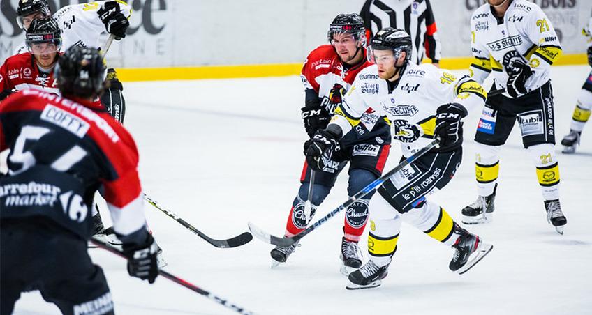 L'année passée les Pingouins avaient remporté les deux affrontements face à Roanne.